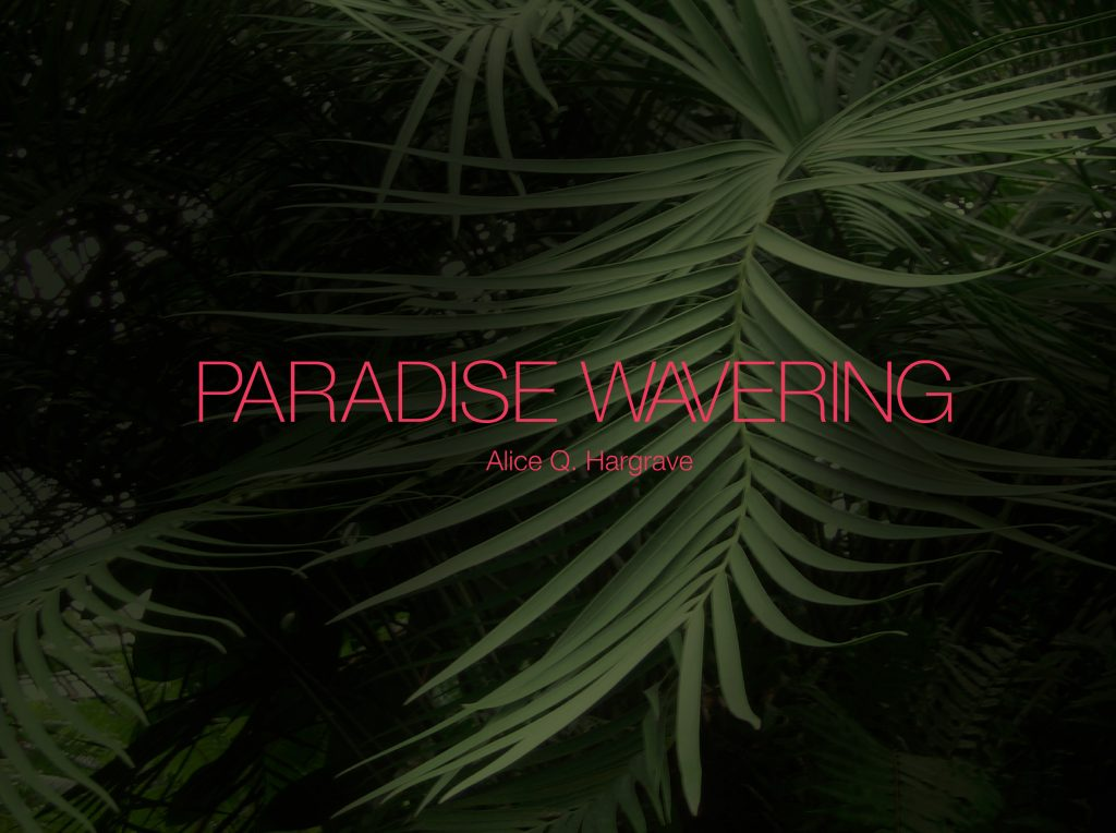 The cover for Paradise Wavering feels almost seductive.