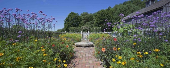 A panorama of the east cutting garden.