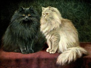 The book of the catLondon,Cassell and company, limited,1903.http://biodiversitylibrary.org/item/77491