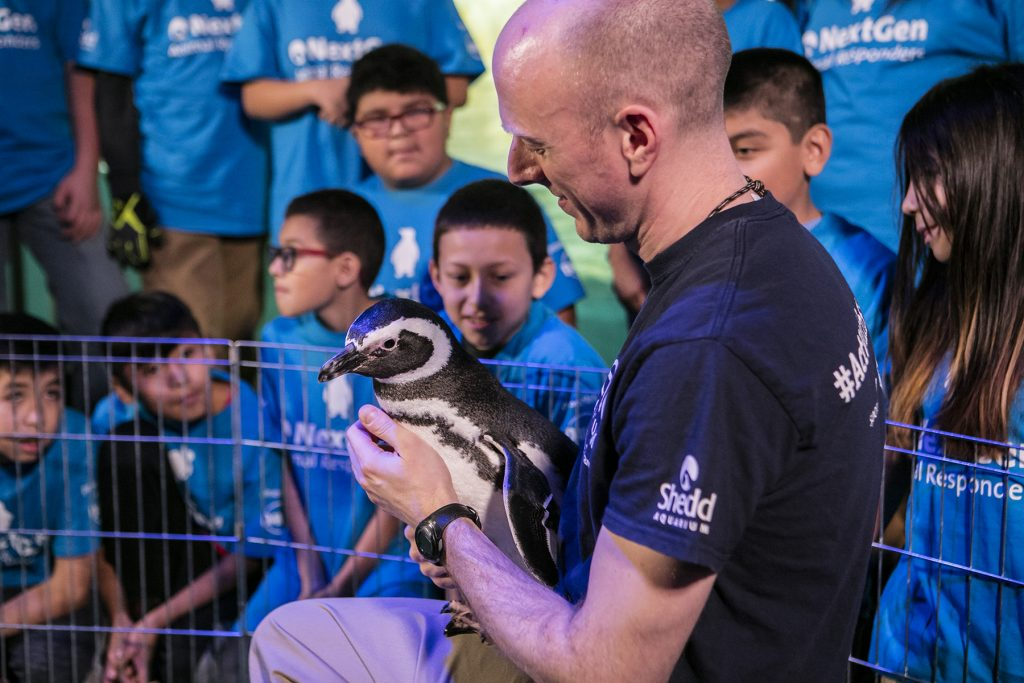 Shedd Aquarium brings out a special guest for the students: a penguin! Students hear about Shedd's Animal Response Team to learn about endangered African penguin rescue efforts and what they can do to help protect their waterways and environment by reducing their use of single-use plastic.